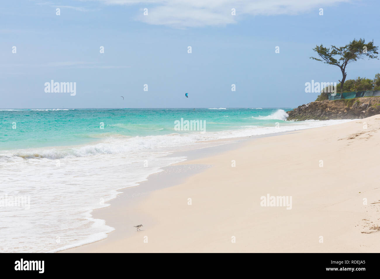 A white beach at Silver Sands on Barbados. Ocean waves roll in. Kitesurfers play in the safe waters off-shore. - Stock Image