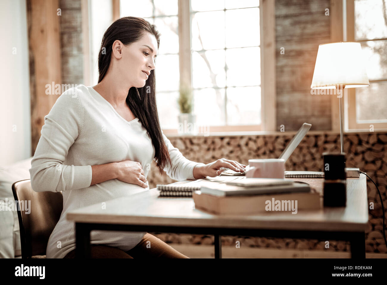 Serious pregnant young woman doing her job - Stock Image