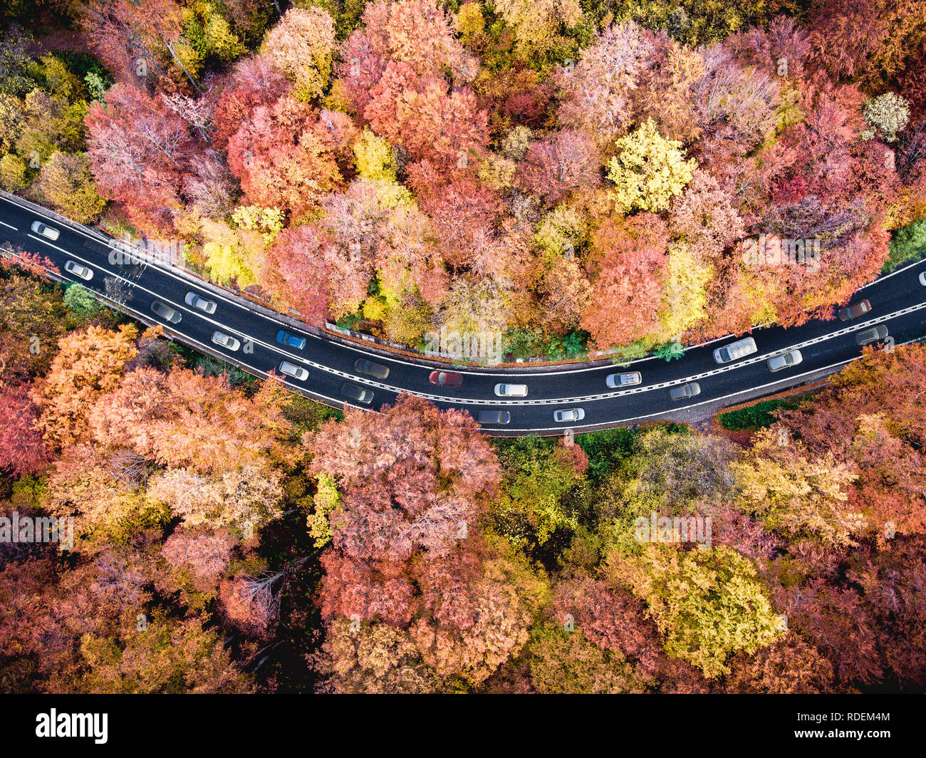 Heavy traffic on a highway trough the forest with cars stuck in a traffic jam road in the mountains Stock Photo