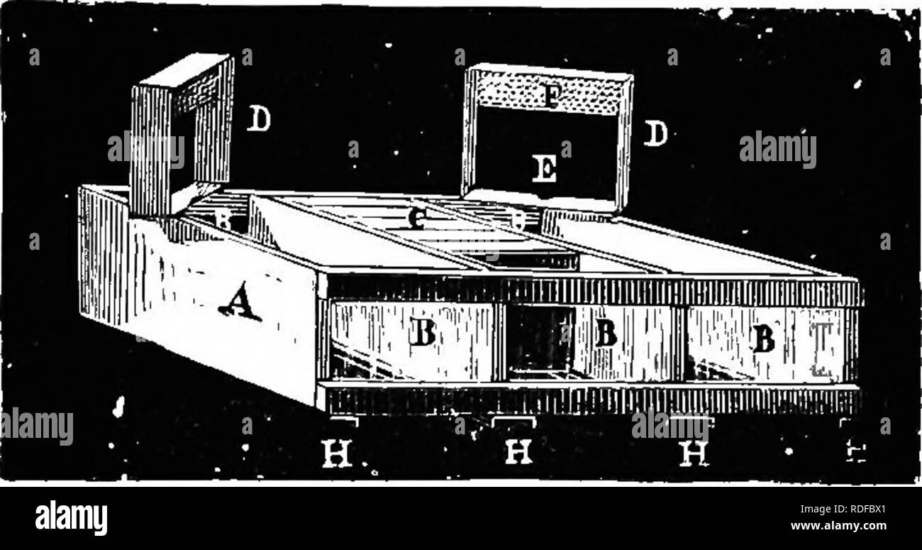 . The bee-keeper's guide : or Manual of the apiary . Bee culture; Bees. 2IO The X and Armstrong Crates. It will be seen that the Heddon crate (Fig. 63) already described (p. 181) as a part of the Heddoti-Langstroth hive, is only a modification of the Southard crate. Except Fig. 81.. Crate for Sections. that it does not permit tlie use of separators, this crate, is in my opinion, as good as any. The case or crate preferred and used by Dr. C. C. Miller (Fig. 82) is one with±shaped tin supports, on which rest the Fig. 82.. Please note that these images are extracted from scanned page images that  - Stock Image