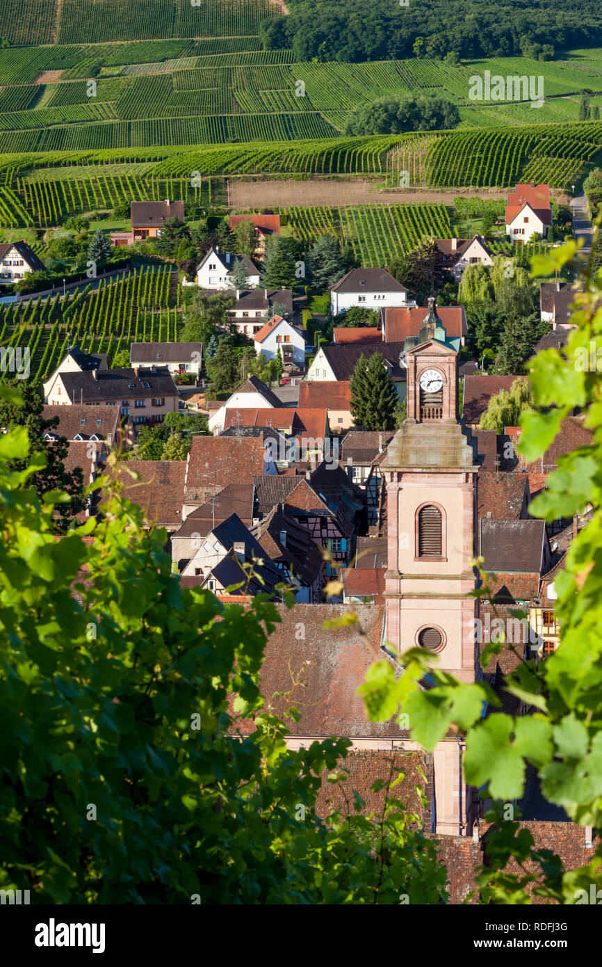 Early morning overlooking Eglise Protestant and medieval village of Riquewihr, along the Wine Route, Alsace, Haut-Rhin, France - Stock Image