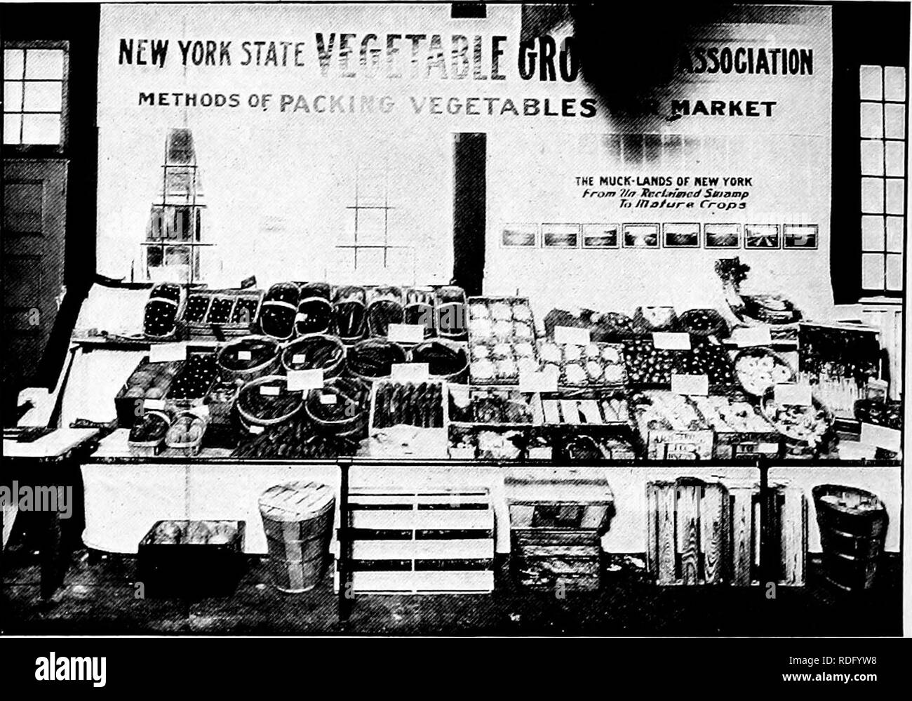 . The vegetable industry in New York state ... Vegetables; Gardening. 13Y0 The Vegetable Industry in New Yoek State Buffalo, Angola and Syracuse. It is probable that many others will be held next year. This was the contribution of 1914. The prime work for 1915, which is now under way, is the es- tablishment of a crop report service for the benefit of members. Sheets are sent out to all members and these are filled out and sent in to headquarters. This work is under the able and ener- getic leadership of Professor W. B. Nissley of the Long Island School of Agriculture at Farmingdale.. Fig. 415. Stock Photo