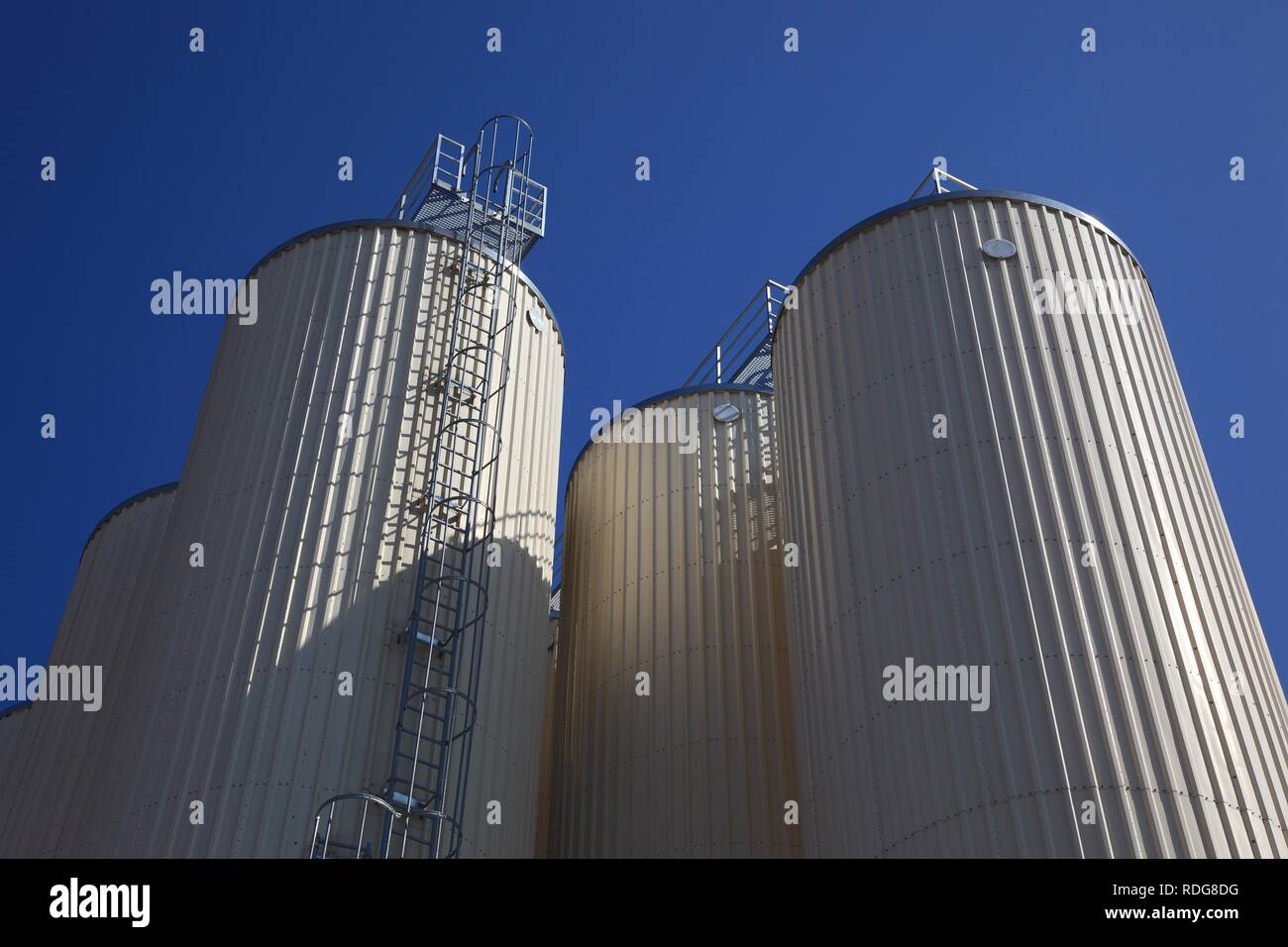 Beer storage tanks of a brewery - Stock Image