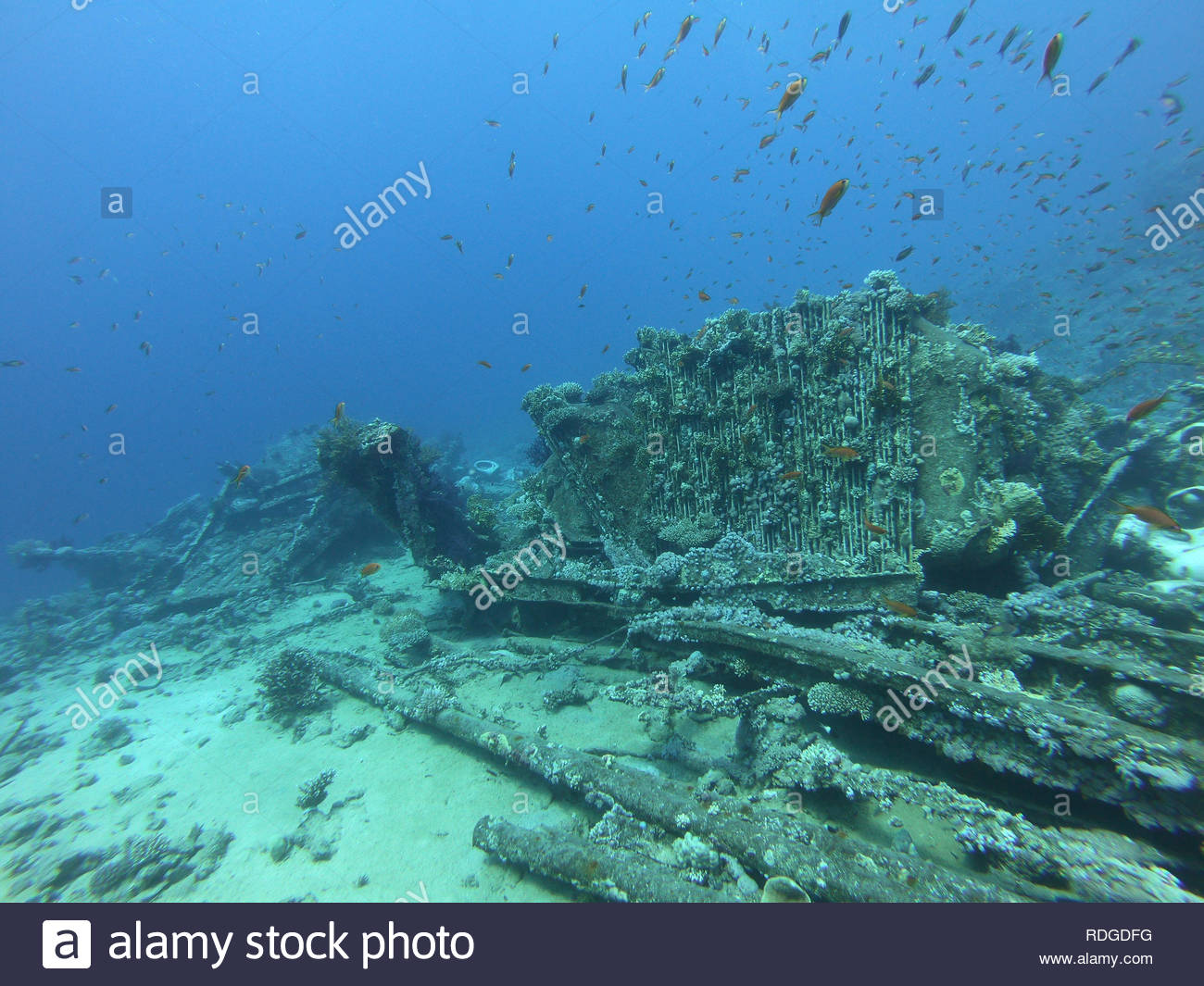 The Wreck of the Yolanda (Jolanda) off Shark Reef in Ras Mohammed National Park near Sharm El Sheikh, Egypt - Stock Image