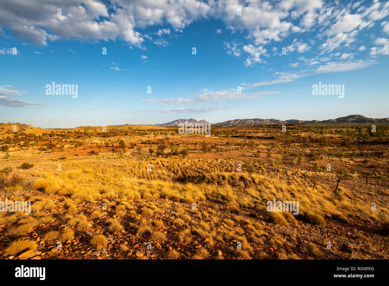 Typical scenery of the MacDonnell Ranges. - Stock Image