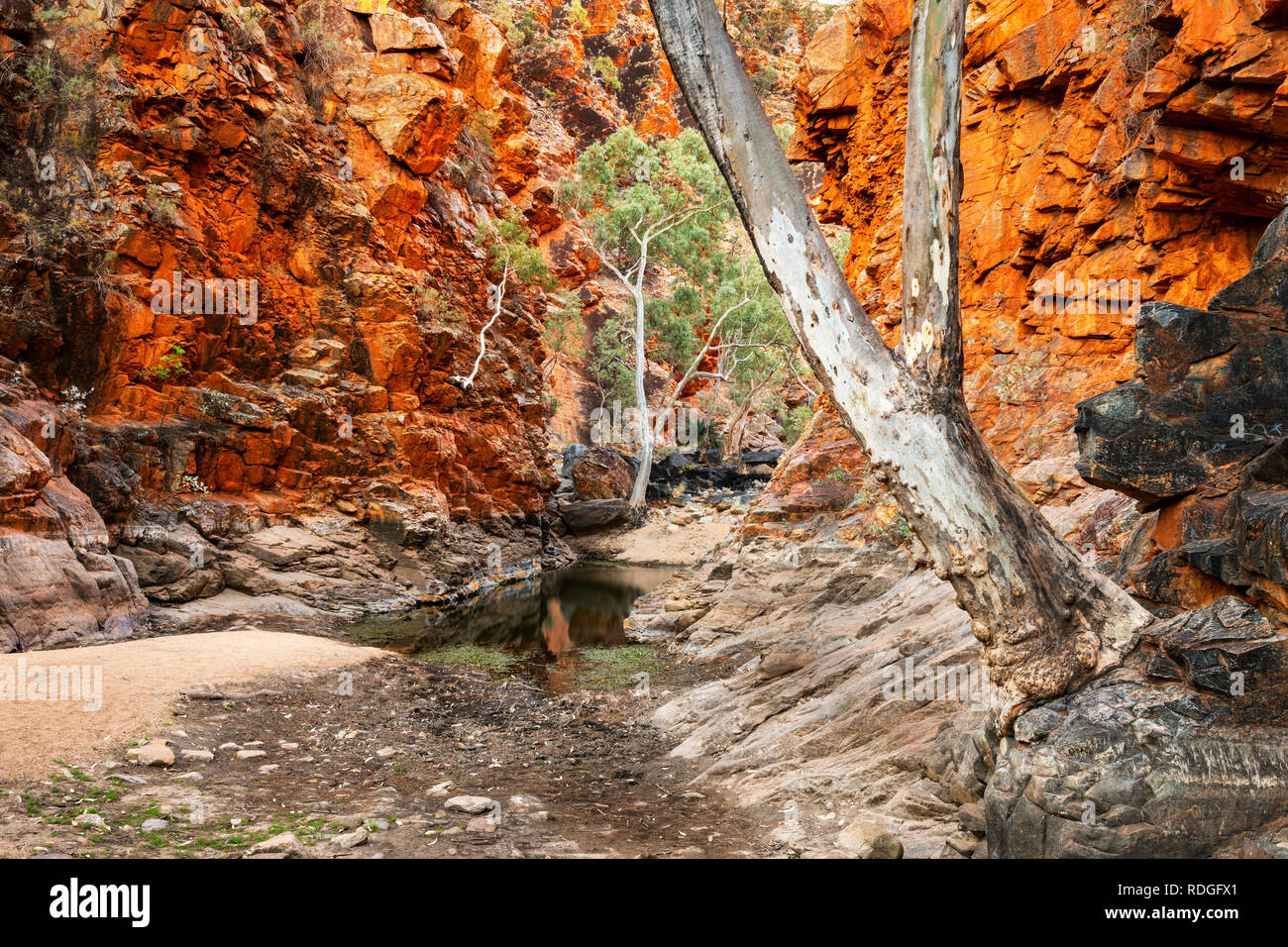 Picturesque Serpentine Gorge in MacDonnell Ranges. - Stock Image