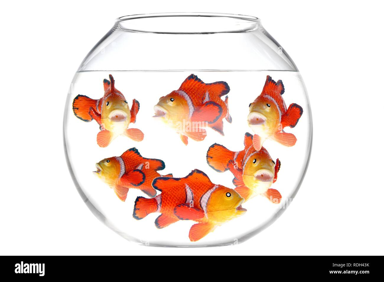 Lots of toy fish in a fish bowl, illustration - Stock Image