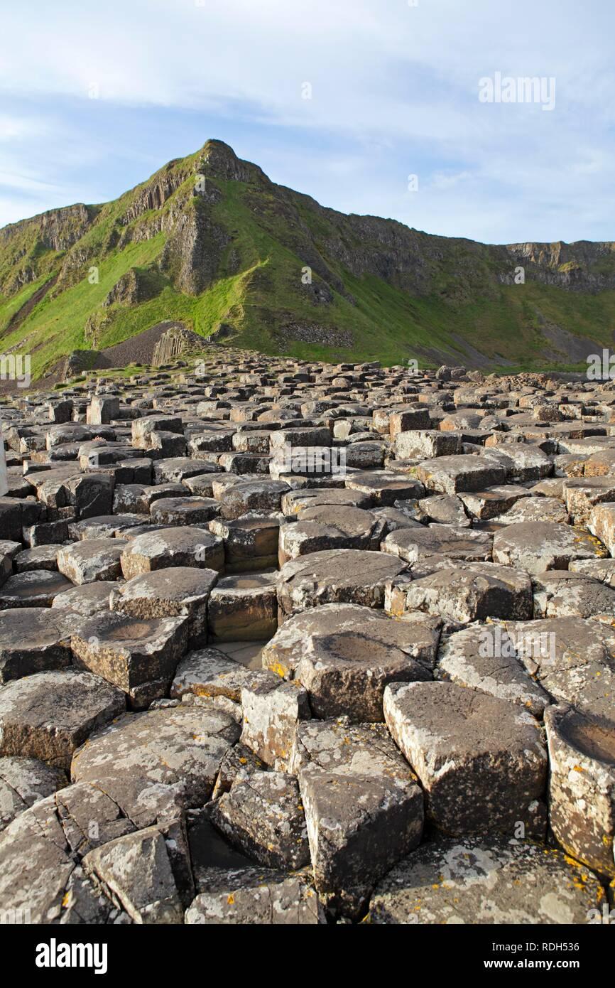 Giants Causeway, County Antrim, Northern Ireland, Europe - Stock Image