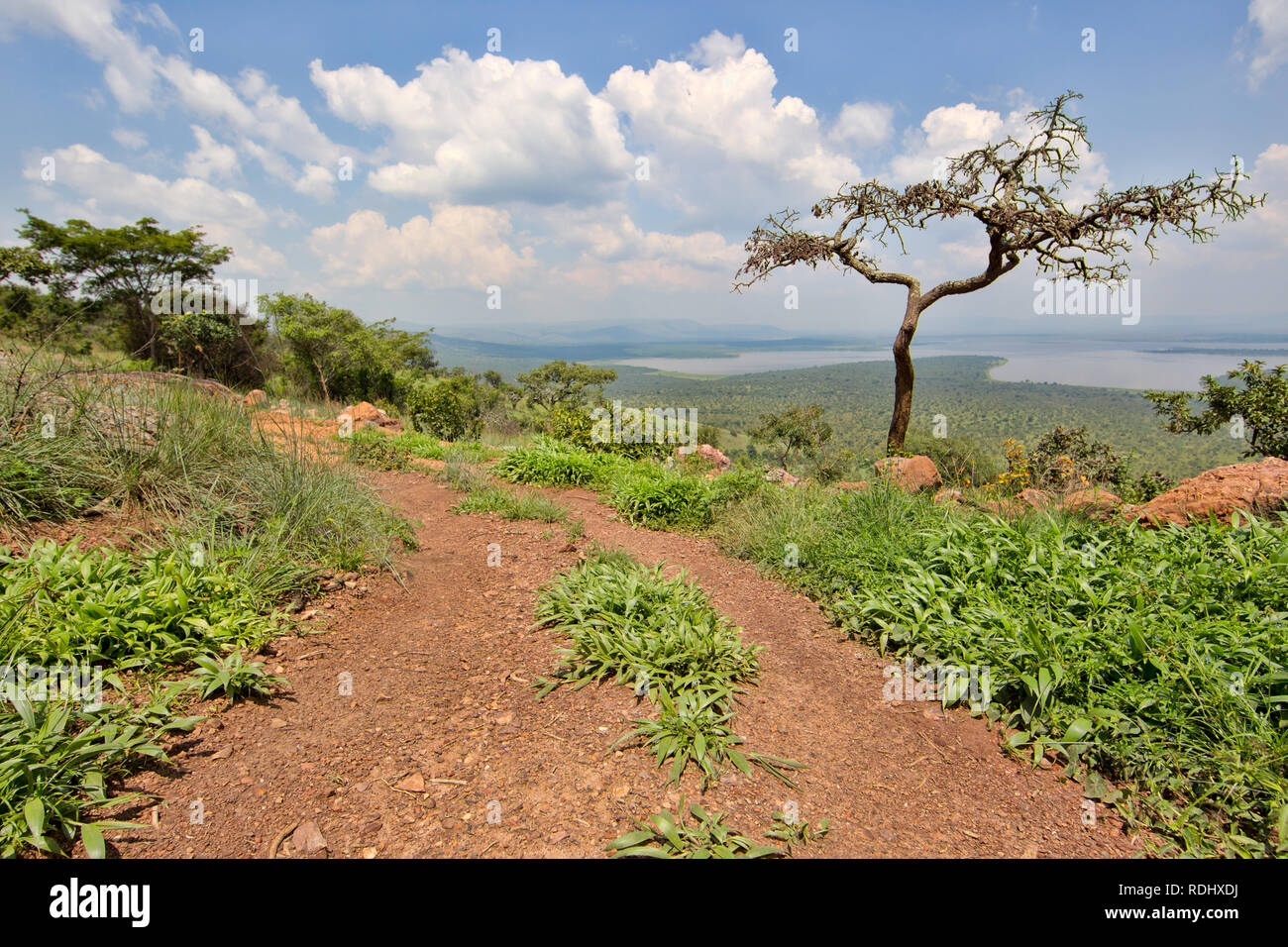 Akagera National Park, Parc National de l'Akagera, Eastern Province, Rwanda is a recovering conservation area. - Stock Image