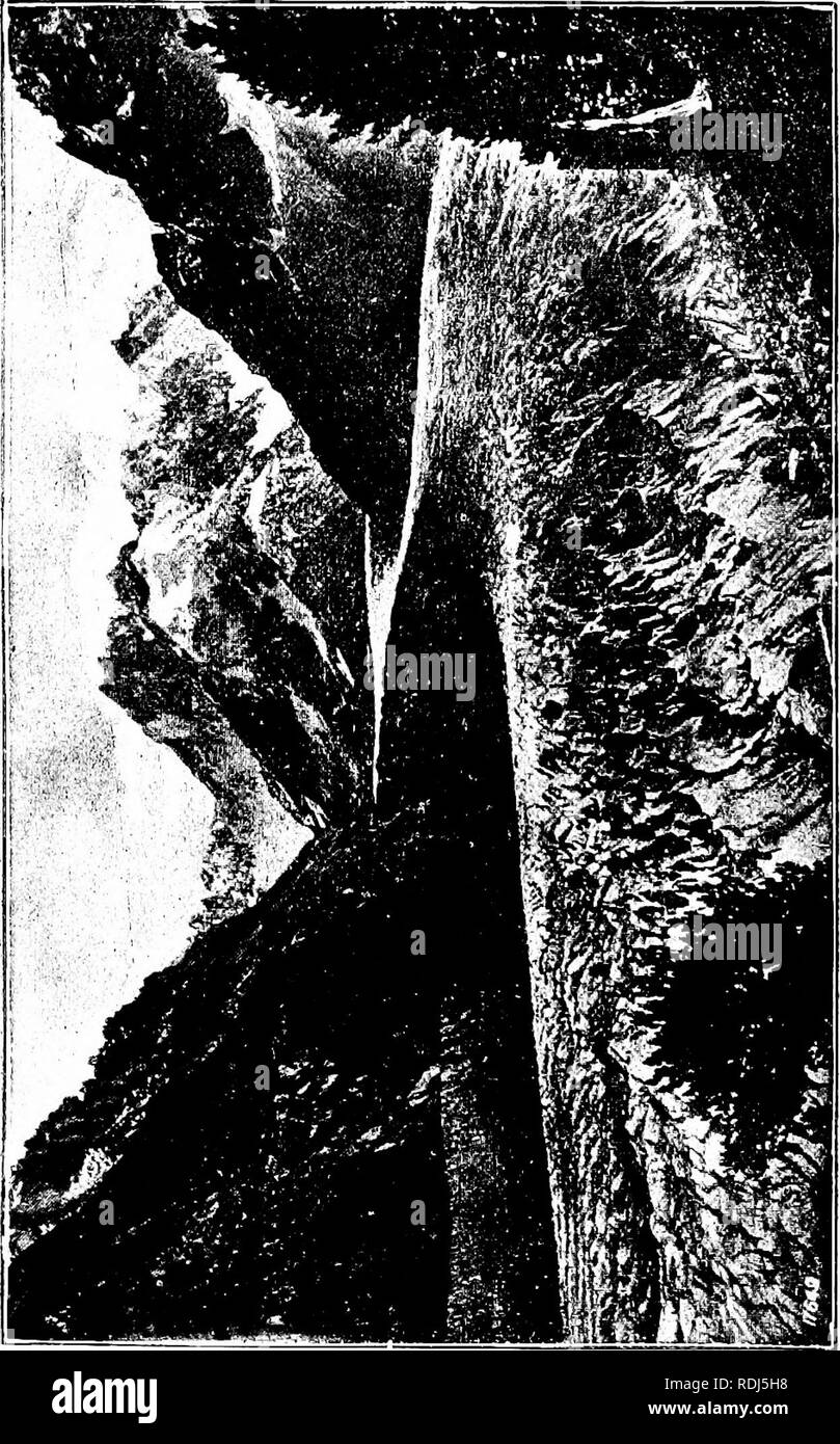 . The beauties of nature and the wonders of the world we live in. Natural history; Physical geography; Astronomy. . Please note that these images are extracted from scanned page images that may have been digitally enhanced for readability - coloration and appearance of these illustrations may not perfectly resemble the original work.. Lubbock, John, Sir, 1834-1913. New York, London, Macmillan and Co. - Stock Image