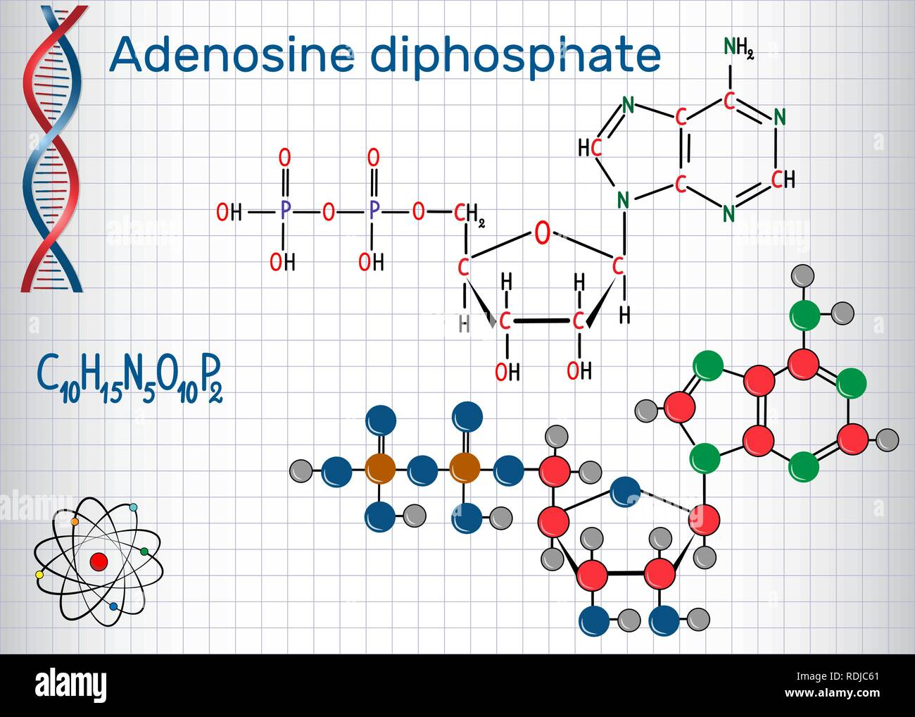 Adenosine diphosphate (ADP) molecule , is an important organic compound in metabolism and is energy transfer in living cells . Sheet of paper in a cag - Stock Image