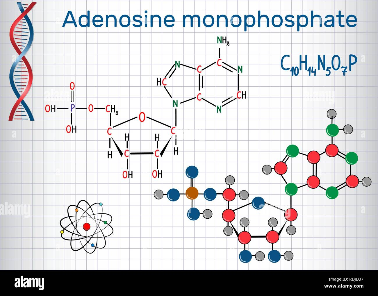 Adenosine monophosphate (AMP) molecule, it is an ester of phosphoric acid and the nucleoside adenosine monomer in the production RNA . Sheet of paper  - Stock Image