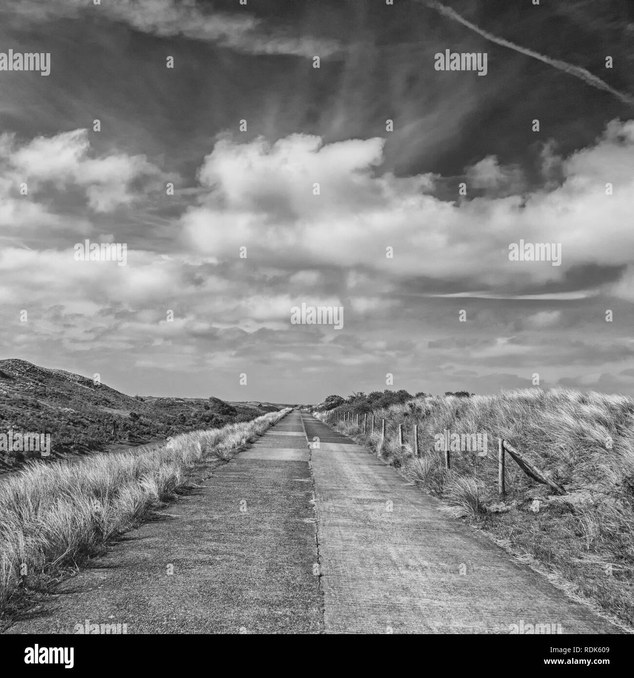 Road through the dunes of district Waterleidingduinen near to the cities Zandvoort and Amsterdam in the Netherlands, monochrome - Stock Image