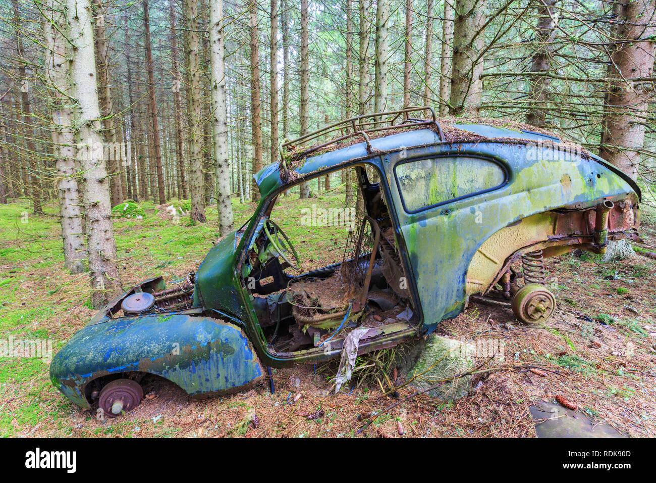 Old car wreck standing in the forest - Stock Image