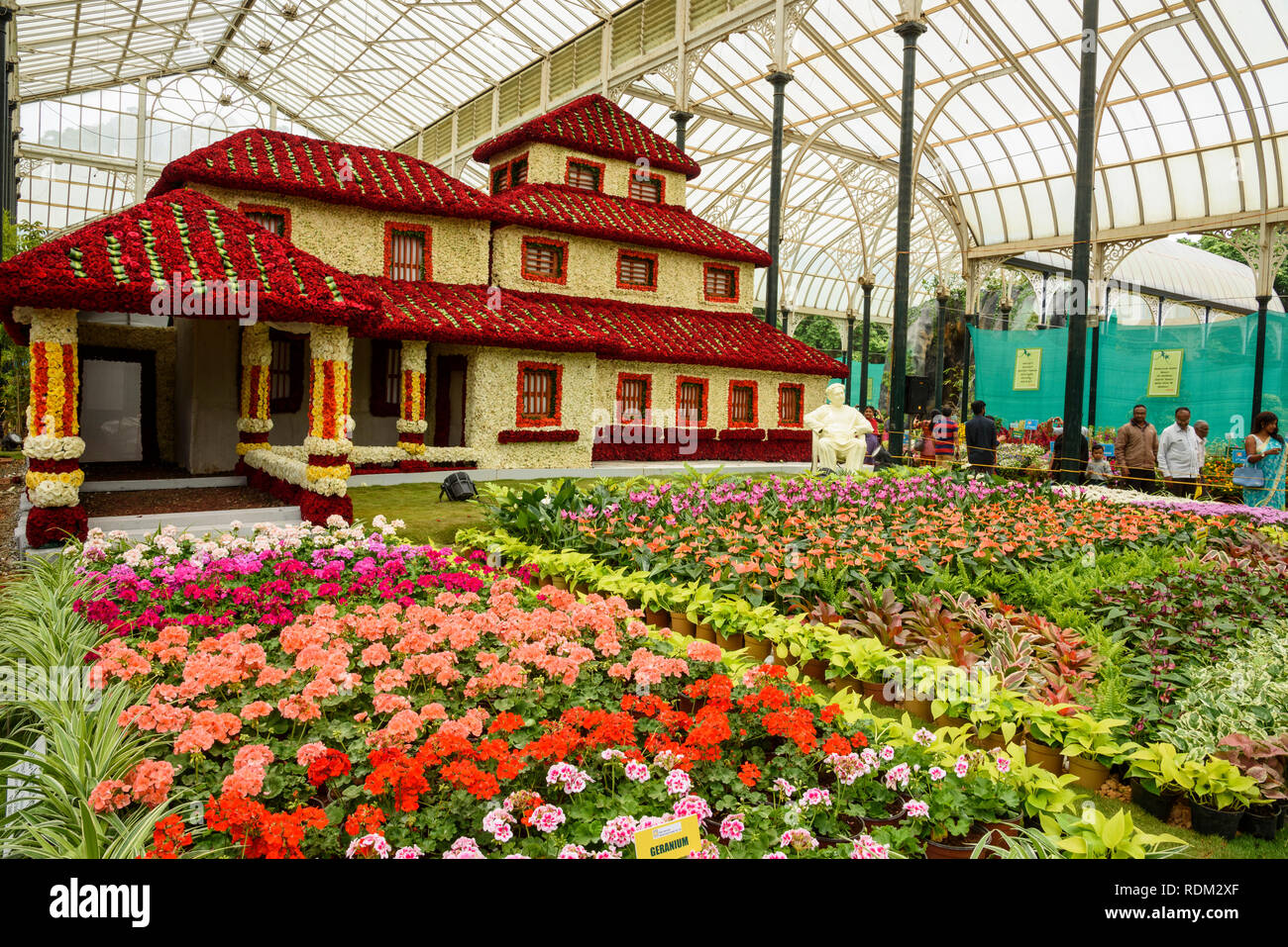 05e3fd5d055d Lalbagh Flowers Stock Photos   Lalbagh Flowers Stock Images - Alamy