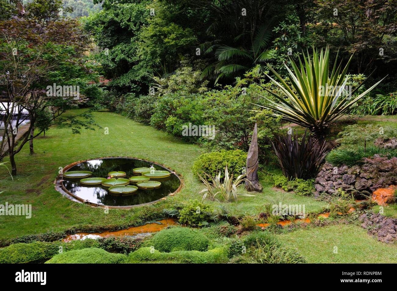 Park Terra Nostra in Furnas on the island of Sao Miguel, Azores, Portugal - Stock Image