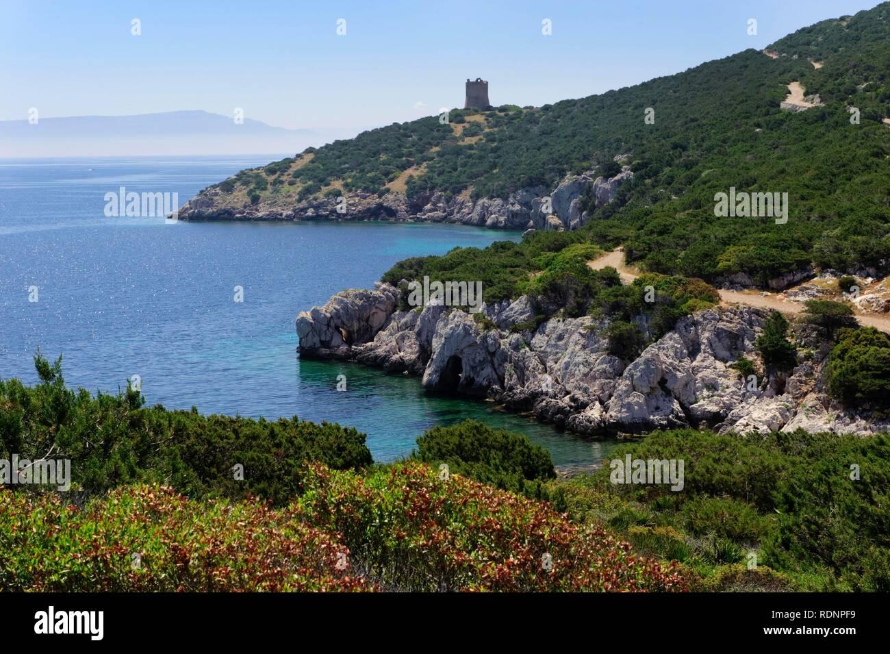 Bay of Porto Conte near Alghero, Sassari Province, Northern Sardinia, Italy, Europe - Stock Image