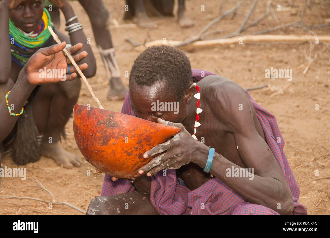 Nyangatom, Bume or Buma man drinking cow blood, Omo Valley, Ethiopia, Africa Stock Photo