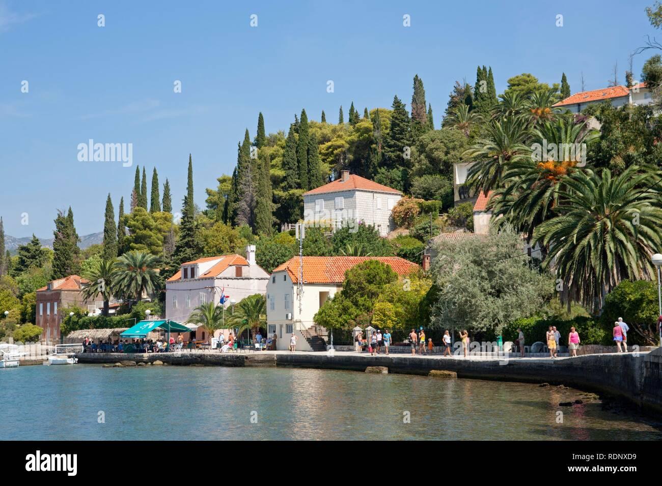 Village on Kolocep Island near Dubrovnik, Elaphiti or Elafiti islands, Southern Dalmatia, Adriatic Coast, Croatia, Europe Stock Photo