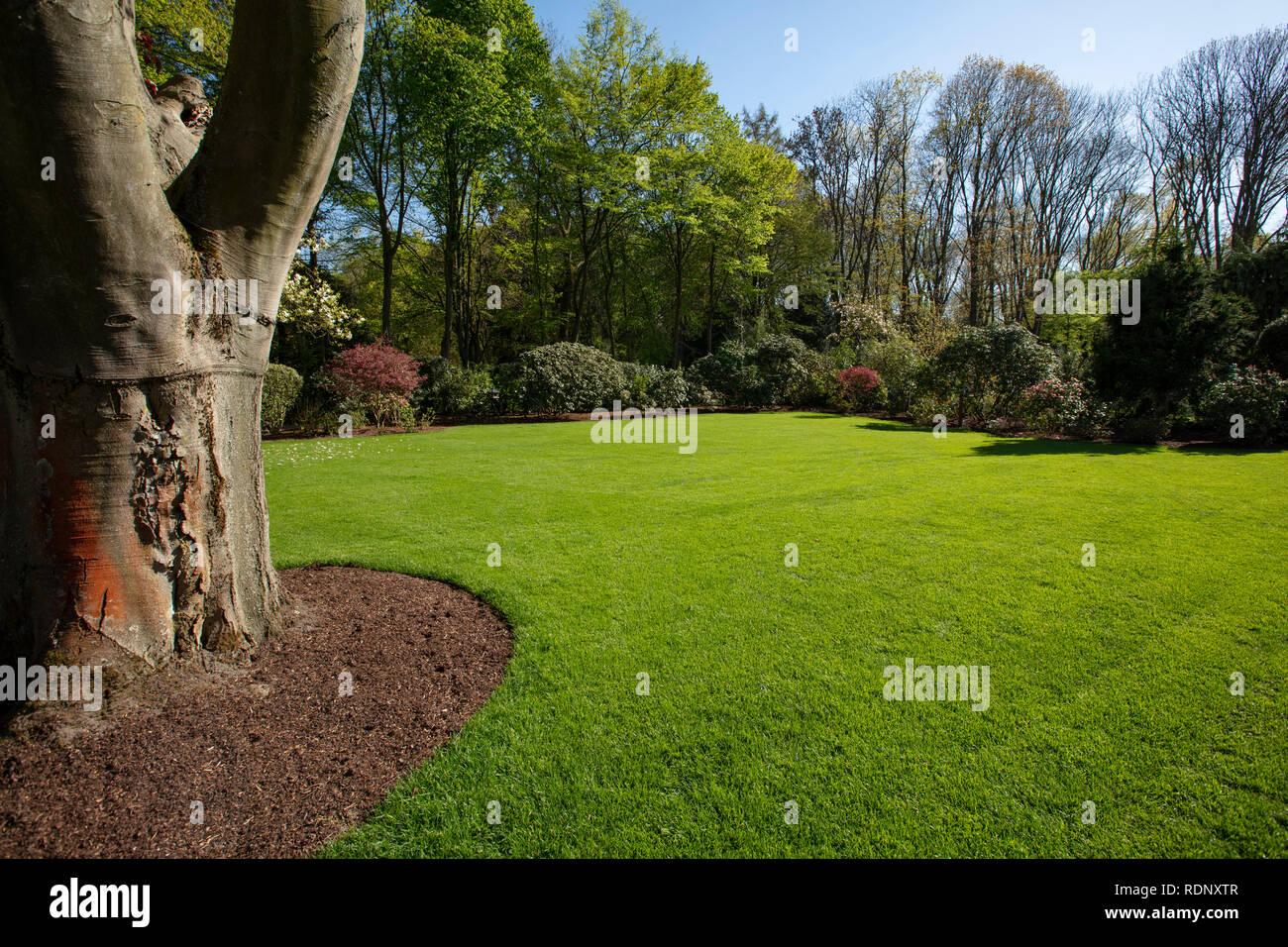Garden, Garten Stock Photo