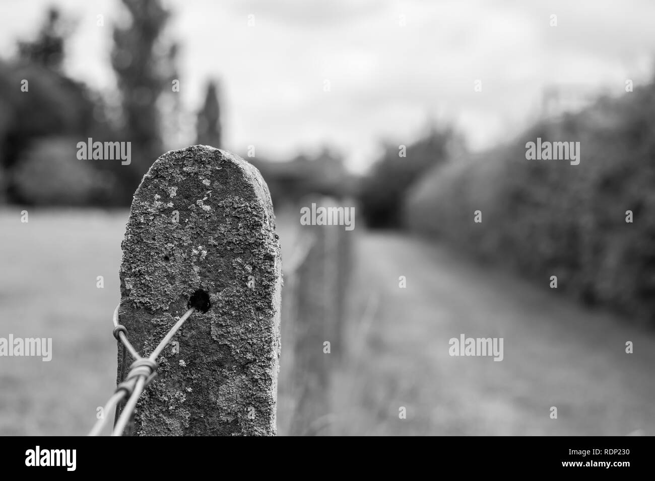 Old concrete pole fence and in the background the road.Picture black and white. - Stock Image
