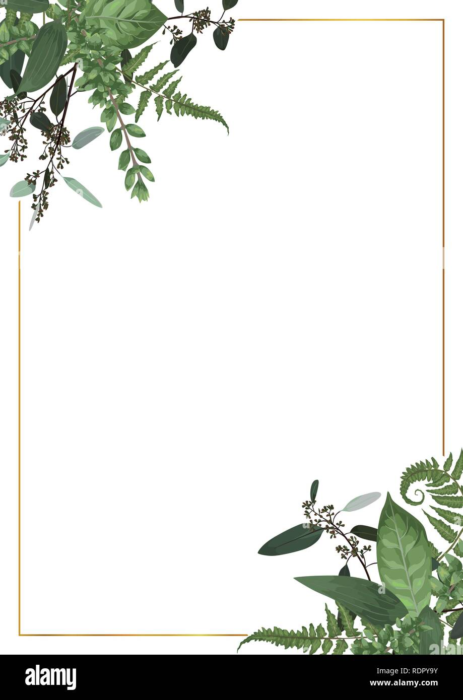 Decorative golden rectangular frame with eucalyptus, fern and boxwood branches isolated on white. For wedding invitations, vignettes, postcards, poste - Stock Vector