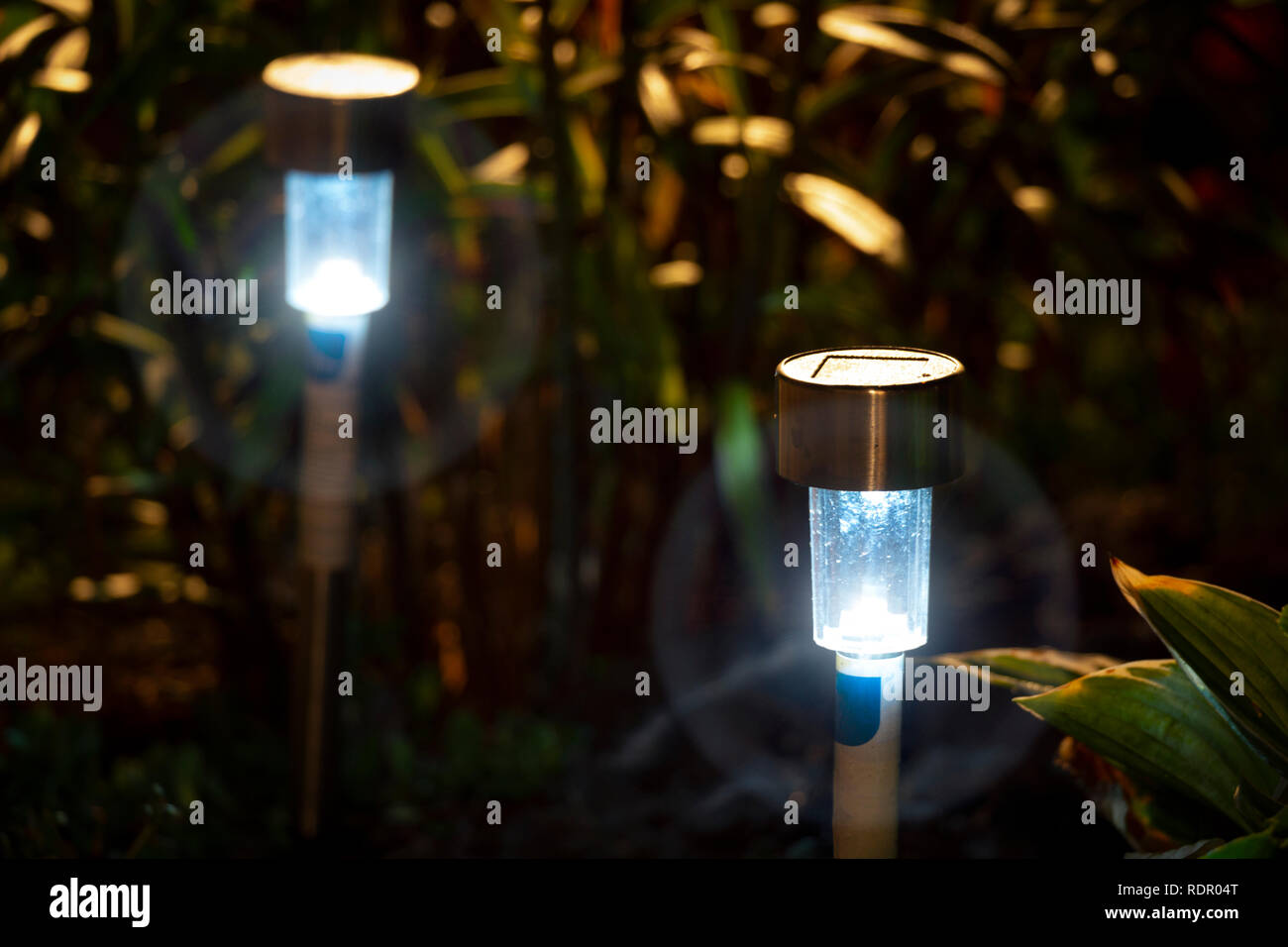 Night garden LED lights with a blue glow. - Stock Image