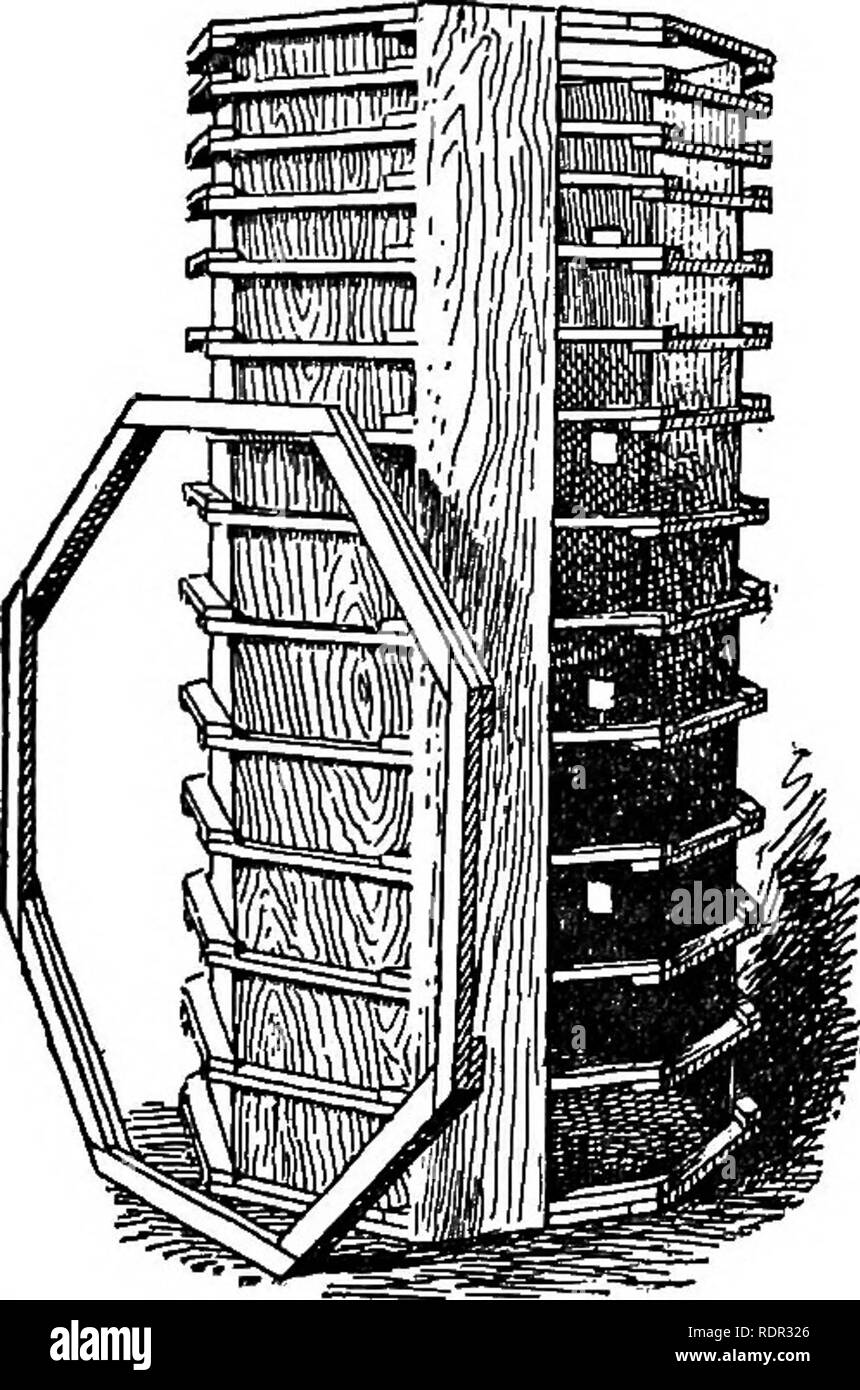 . Cyclopedia of farm crops, a popular survey of crops and crop-making methods in the United States and Canada;. Farm produce; Agriculture. SILAGE-CROPPING SILAGE-CROPPING 567 lerica, Mass., constructed a concrete silo on his farm. By gatherings of the press and of public men at the opening of his silo, and by free writing on the subject of silage, coupled with extravagant praise of the material, he created a sudden and wide interest in the new method of crop storage. In a decade the silo came into wider use and under- went a more radical change than had occurred in the century or centuries of  - Stock Image