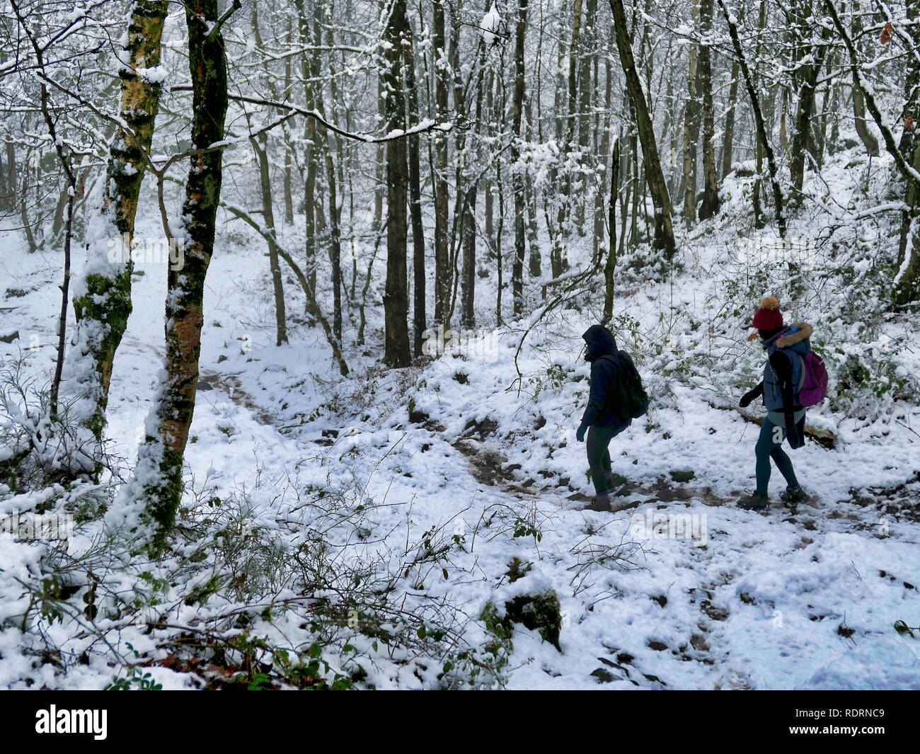 Derbyshire, Peak District National Park, UK, January 2018UK Weather: walkers enjoying the snowy wintery weather Black Rocks, Big Plantation, Derbyshire, Peak District National Park Credit: Doug Blane/Alamy Live News Credit: Doug Blane/Alamy Live News Stock Photo