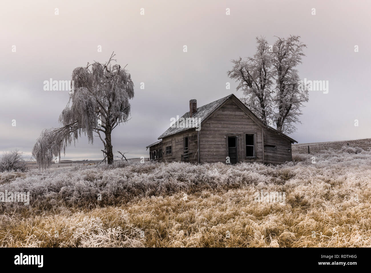 An abandoned rural homestead in winter with frost on the gorund near Davenport, Washington. - Stock Image