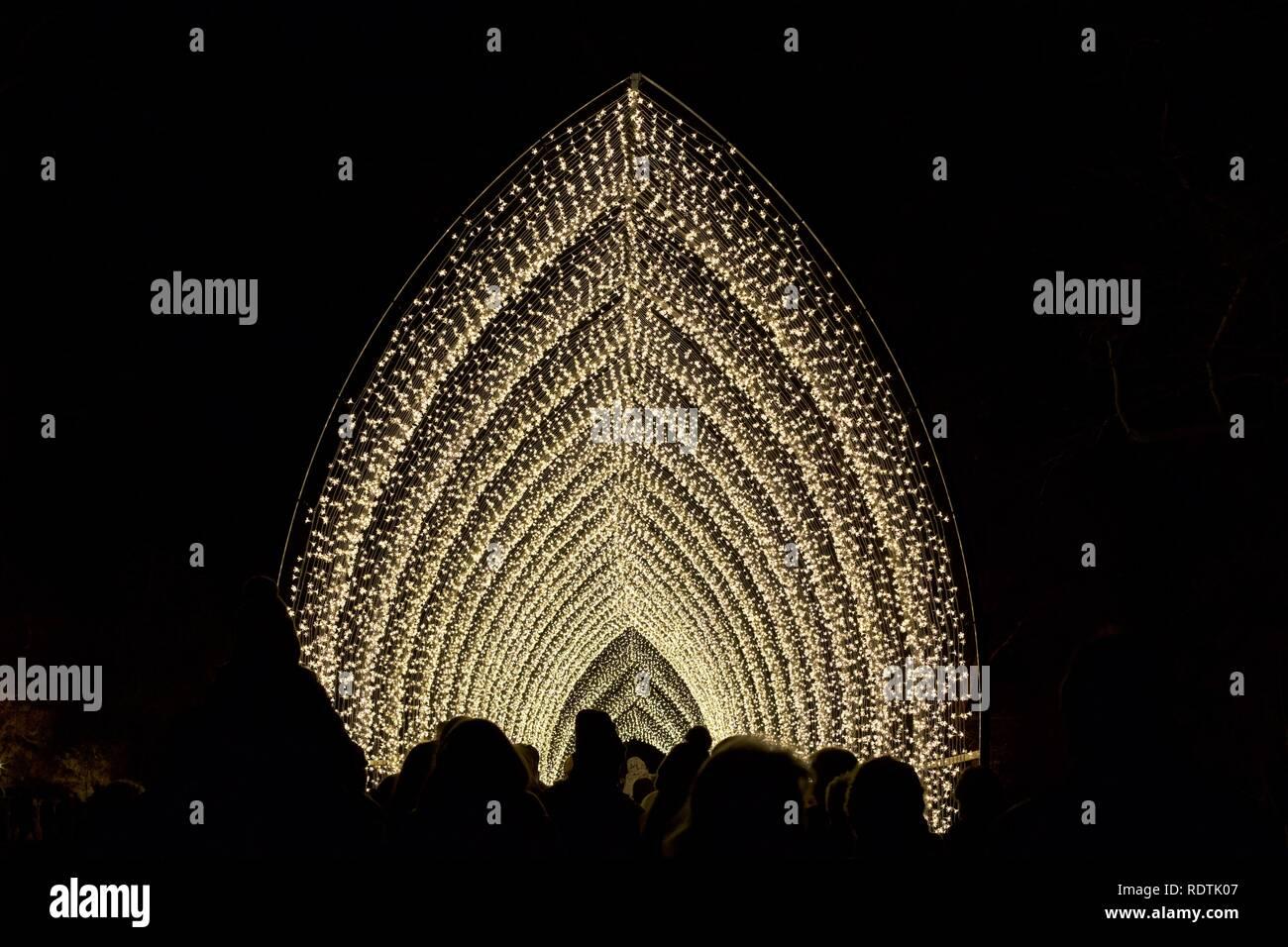 100m long Cathedral of Light at Christmas at Kew Gardens 2018 - Stock Image