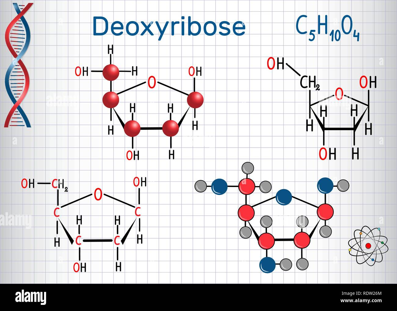 Deoxyribose molecule, it is a monosaccharide (deoxy sugar), it forms part of the backbone of DNA. Structural chemical formula and molecule model. Shee - Stock Image