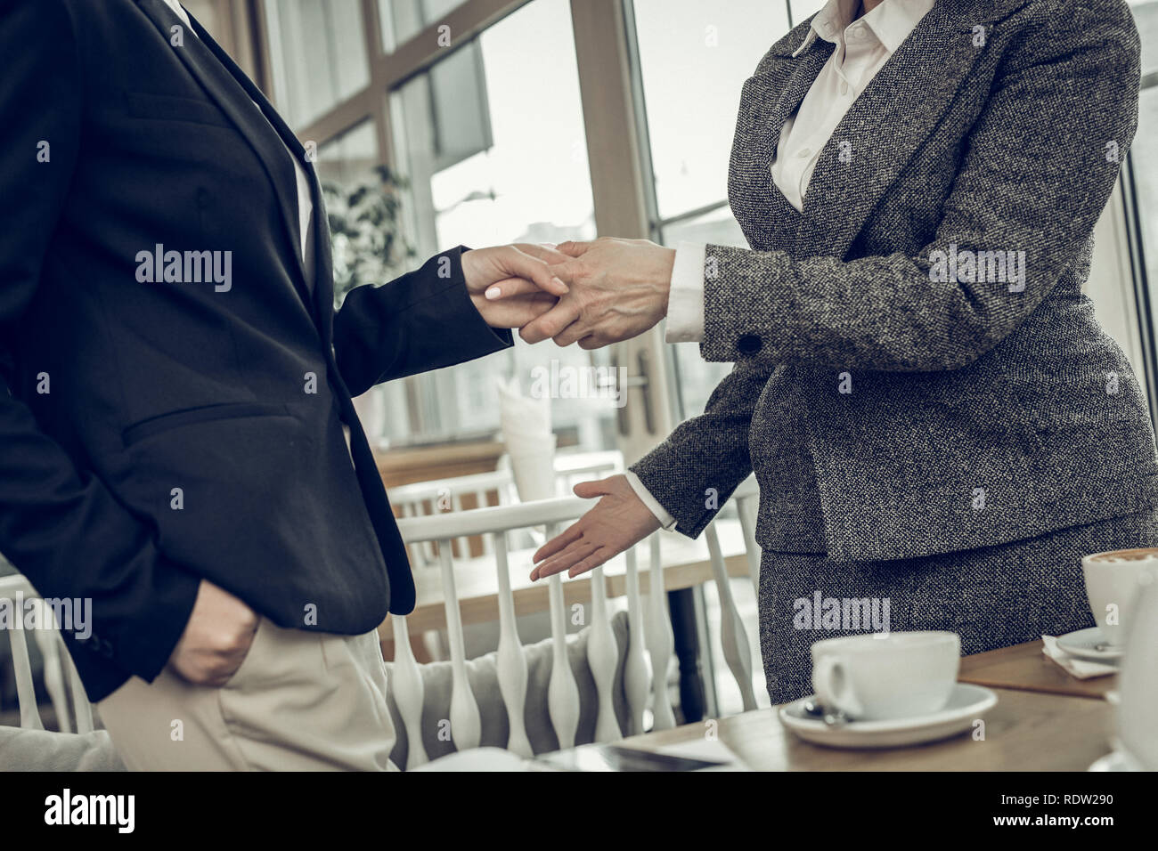 Successful stylish businesswomen shaking their hands after negotiation - Stock Image