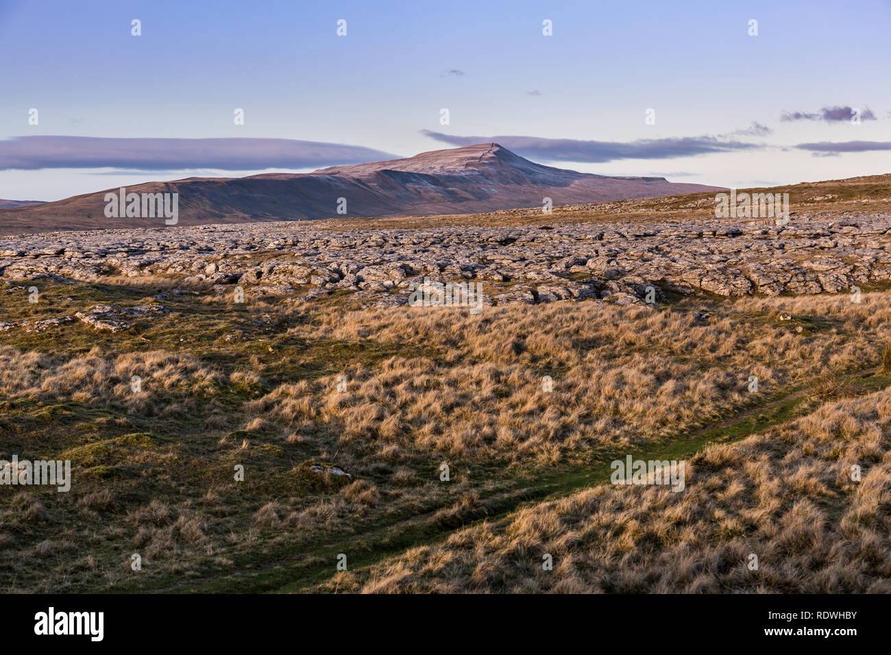 Whernside At 736m (2,415ft), the highest of the Yorkshire Three Peaks is the least popular among walkers perhaps because of its less iconic profile. - Stock Image
