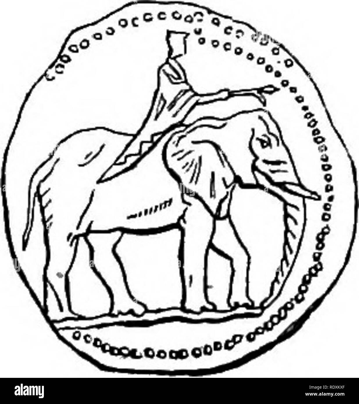 8d337d1d89bc6 ... anecdotes illustrative of the habits and instincts of the mammalia,  birds, reptiles, fishes, insects, &c. including a monograph of the  elephant .