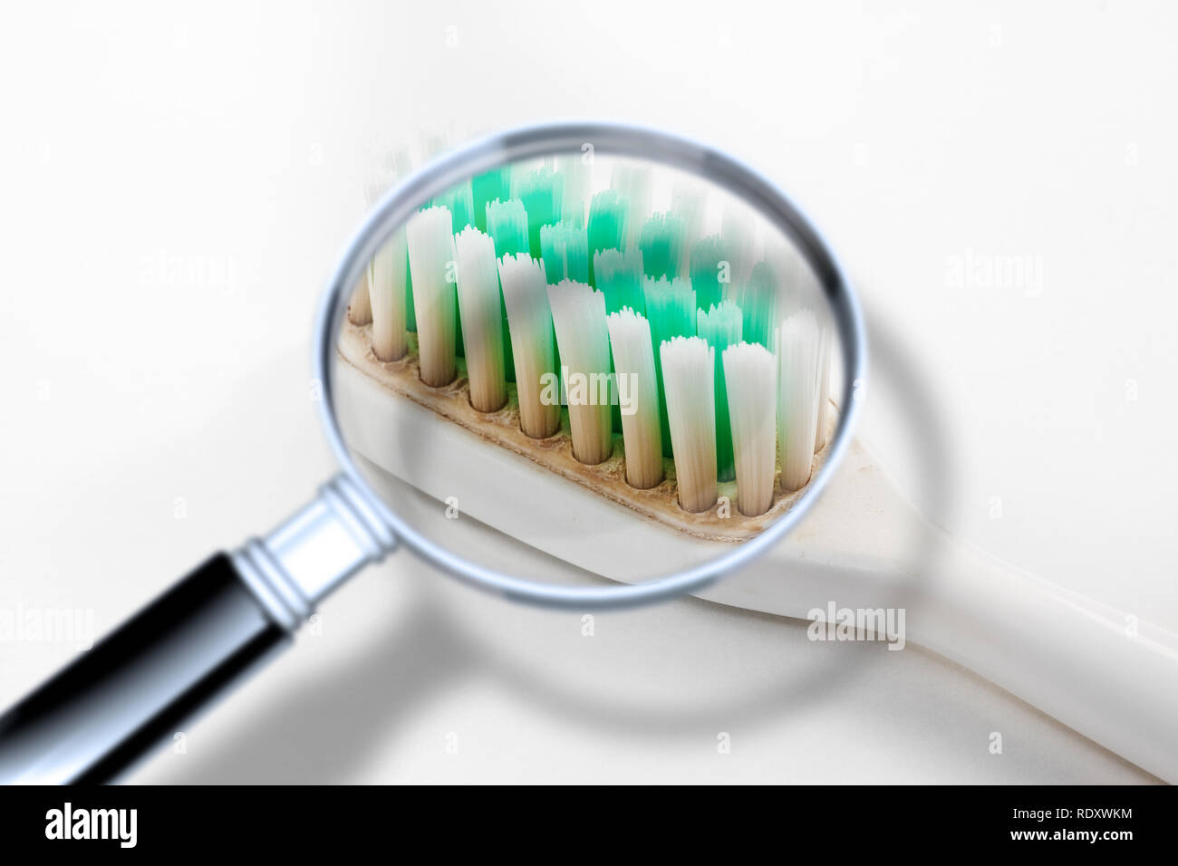 Old dirty and unhygienic toothbrush - Concept image seen through a magnifying glass - Stock Image