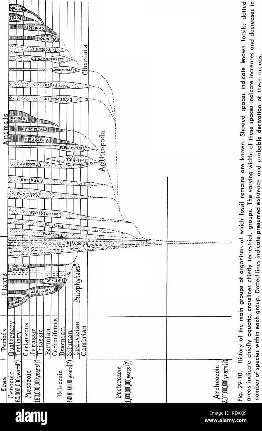 . Principles of modern biology. Biology. The Consequences of Evolution - 563. Please note that these images are extracted from scanned page images that may have been digitally enhanced for readability - coloration and appearance of these illustrations may not perfectly resemble the original work.. Marsland, Douglas, 1899-. New York, Holt, Rinehart and Winston - Stock Image