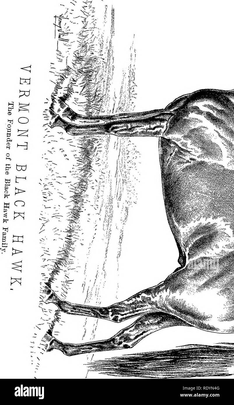 . Chester's Complete trotting and pacing record, containing summaries of all races trotted or paced in the United States or Canada, from the earliest dates to the close of 1883. Horse-racing. »*3$P*. Please note that these images are extracted from scanned page images that may have been digitally enhanced for readability - coloration and appearance of these illustrations may not perfectly resemble the original work.. Chester, Walter T. New York, The Compiler - Stock Image