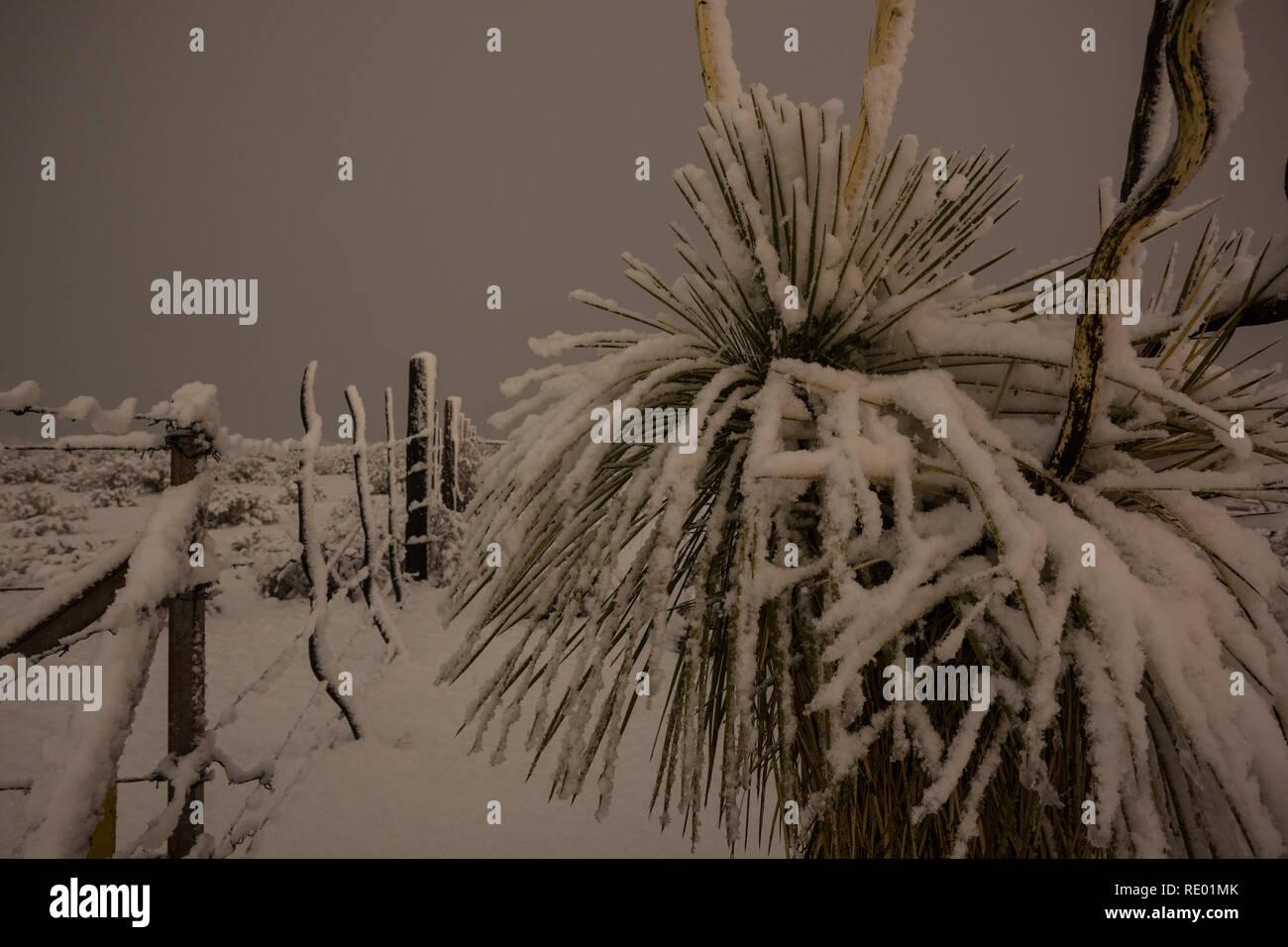 Lordsburg, Hidalgo County, New Mexico, USA - Stock Image