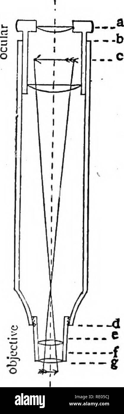 """. The microscope : an introduction to microscopic methods and to histology. Microscopes. MICROSCOPE AND ACCESSORIES [CH.I Length in Millimeters and Parts included in the """" Tube-Length """" by Various Opticians. Pts. included in """"Tube- """"Tube-Length """" in Length."""" Millimeters. See Diagram. f Chas. Baker, London, England 150 or 250 mm. I The Bausch. & Lomb Optical Co., Rochester, N. Y 160 mm. I R. & J. Beck, London, England 160 or 220 mm. j B£zu, Hausser & Cie, Paris, France 180 mm. I Klonne und Miiller, Berlin, Germany 160 or 250 mm. h& Queen & Co., - Stock Image"""