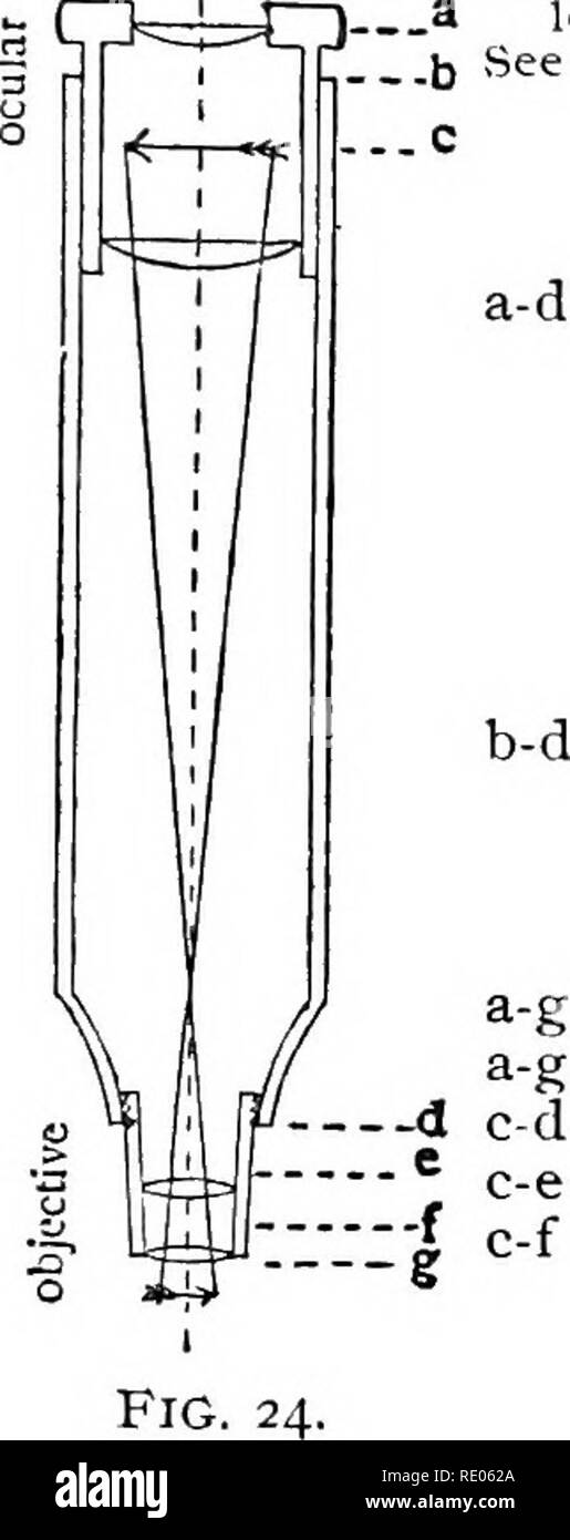 """. The microscope and microscopical methods. Microscopes; 1896. CH. /.] MICROSCOPE AND ACCESSORIES. 15. """" Tube-length """"i Millimeters. b-d  Length in Millimeters and Parts included in """" Tube-Length"""" by Various Opticians.* r Pts. included in """"Tube- _3 length."""" ^ b See Diagram. .c fGrunow, New York 203 mm. E. Leitz, Wetzlar 170 mm. I Nachet et Fils, Paris . • ' 146 or 200 mm. a-d -j Powell and Lealand, London .... 254 mm. I C. Reichert, Vienna 160 to 180 mm. I Spencer Lens Co., Buffalo 235 or 160 mm. L W. Wales, New York 254 mm. Bausch & Lotnb Opt. Co., Rochester - Stock Image"""