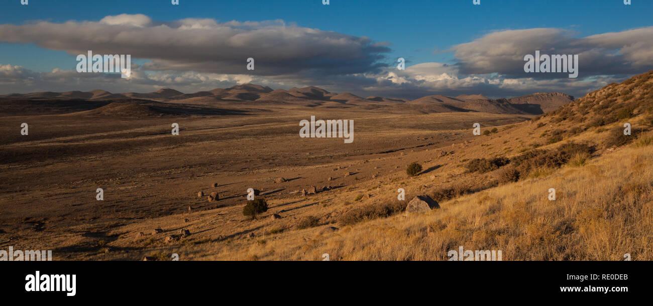 City of Rocks S.P., Grant County, New Mexico, USA - Stock Image
