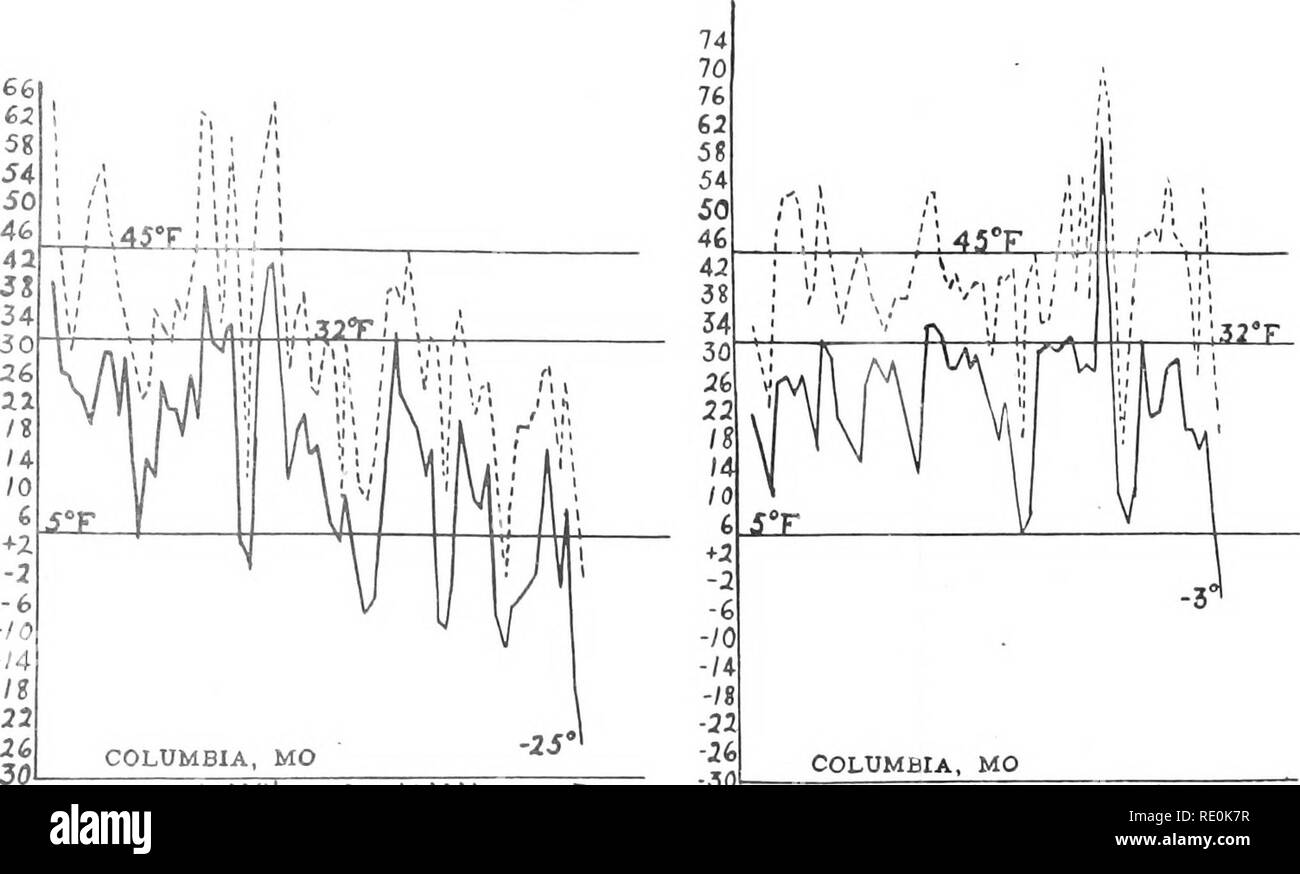 . The killing of plant tissue by low temperature. Plants, Effect of temperature on; Frost. ISHKONONG DURING THE YEARS 1901 TO 1912, AND INCLUDING THE SEASON BEGINNING DECEMBER 1. AND EXTENDING GENERALLY TO THE DATES AT WHICH BUDS WERE KILLED IN FEBRUARY WHEN SUCH KILLING OCCURRED. ALSO MAXIMUM JANUARY, 1908 TO FEBRUARY, 1910. UPPER CURVES ARE FOR MAXIMUM AND LOWER CURVES FOR MINIMUM TEMPERATURES.. '-a-GJSbJS^Uo. ££«££-0.05 Dec.'04 Jan.'05 Feb.'05 -sol COLUMBIA, MO «-4.= ui5Kyy^«5S;gSS;^. Please note that these images are extracted from scanned page images that may have been digitally enhanced  - Stock Image
