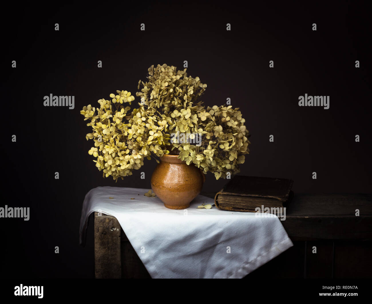 Dramatic chiaroscuro style photo of dried hydrangea flowers with old book on dark background. Melancholy still life with copy space. - Stock Image