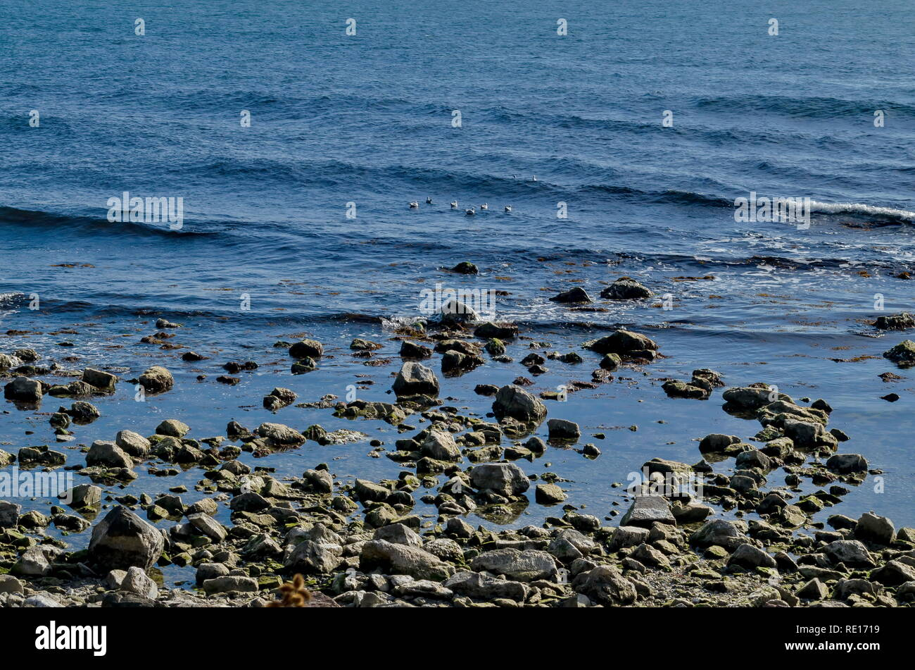 4f78bc8dcda Life by seashore in Black sea Nessebar, Bulgaria Stock Photo ...