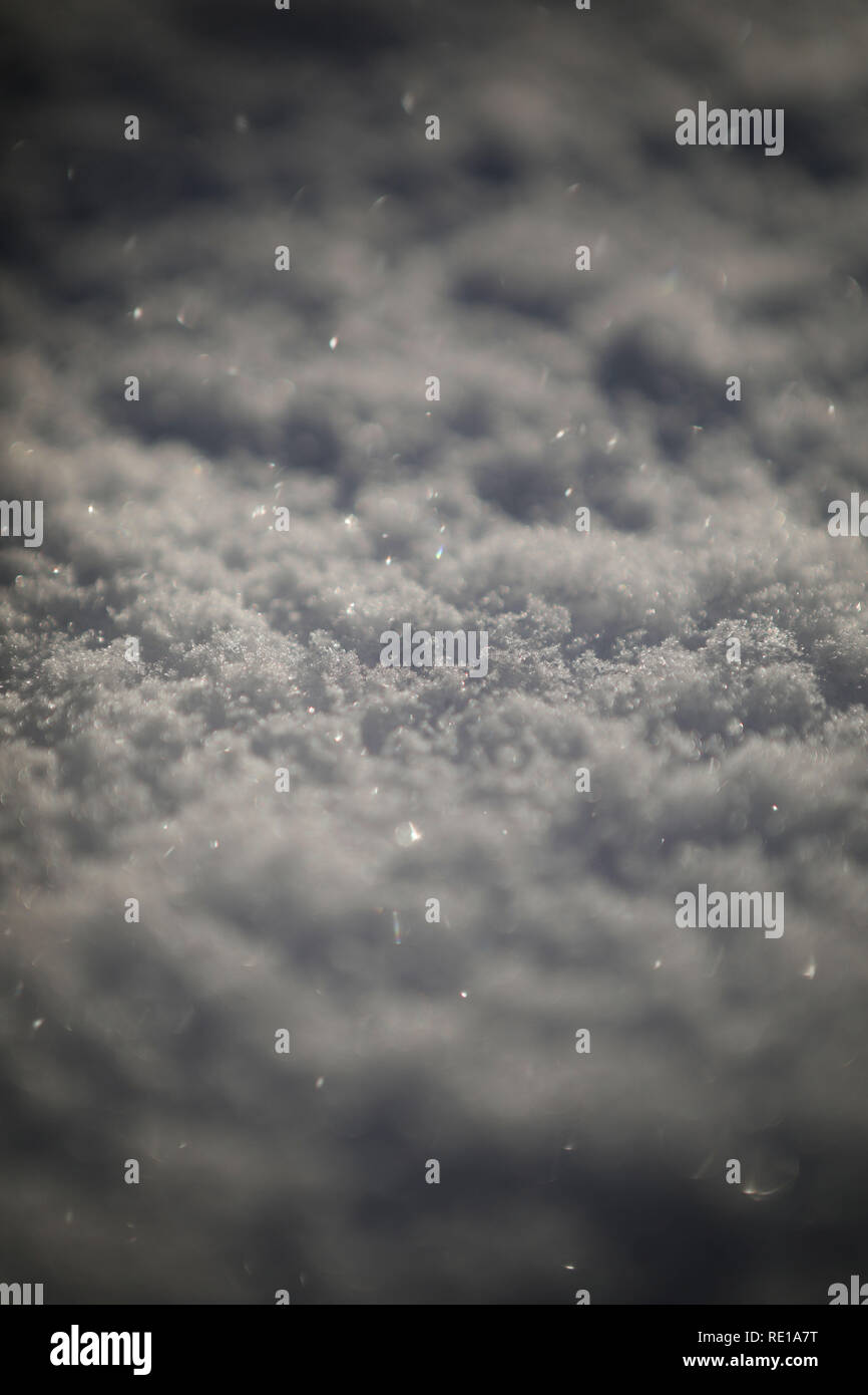 Snow, low depth of field - Stock Image