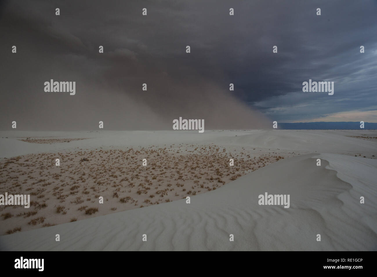 White Sands National Monument, Otero County, New Mexico, USA - Stock Image