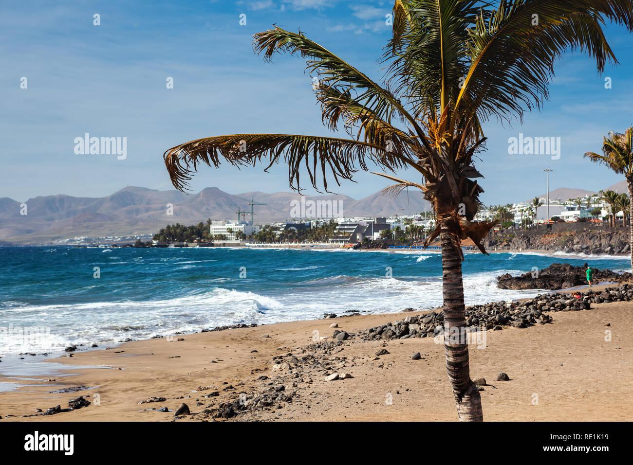 Puerto del Carmen beach in Lanzarote, Canary islands, Spain. blue sea, palm trees, selective focus Stock Photo