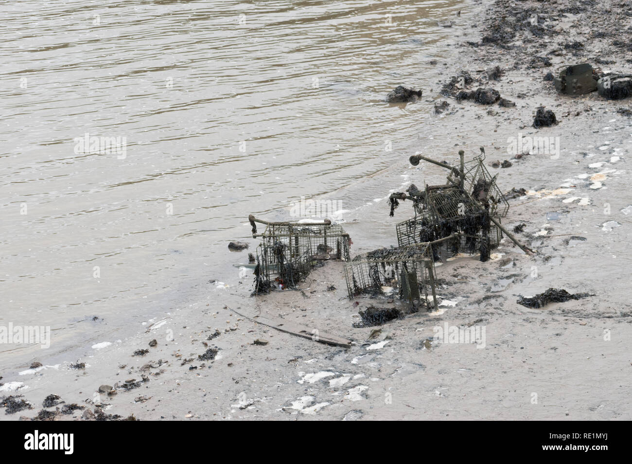 Shopping trolleys and other items thrown into a tidal river are being covered over by mud, silt and seaweed. Shows environmental littering and harm. - Stock Image