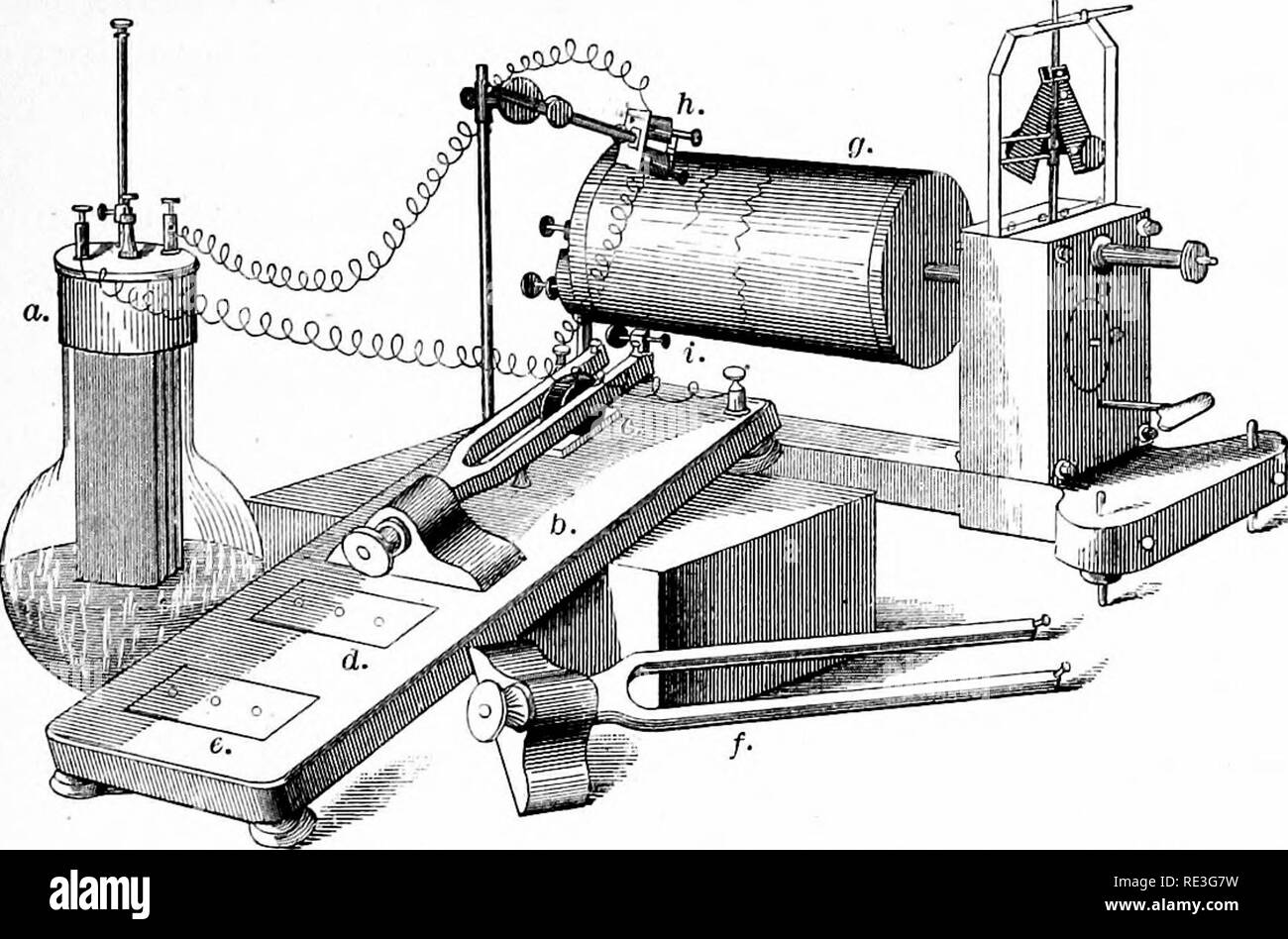. A text-book of animal physiology, with introductory chapters on general biology and a full treatment of reproduction ... Physiology, Comparative. APPLICATIONS OP THE GRAPHIC METHOD. 173 little mass of steel attached to it, the whole working in unison with the tuning-fork, so that an interruption of the current. Fio. 166.—Marey's chronograph as applied to revolving cylinder (after McKendrick). a. gal- vanic element; 6, wooden stand bearing tuning-fork (two hundred vibrations per second); c, electro-magnet between limbs of tuning-fork ; d, e, positions for tuning-forks of one hun- dred and fif - Stock Image